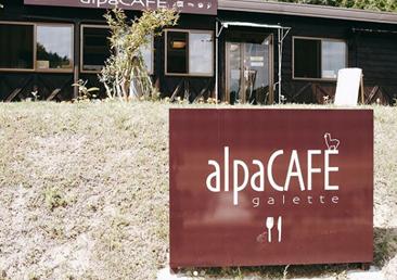 のんびりアルパカ牧場