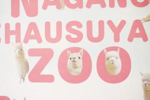 長野市茶臼山動物園さんのアルパカポスターが可愛すぎる
