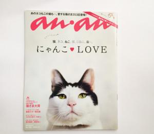 猫もぐらたたきBOX (an an掲載)